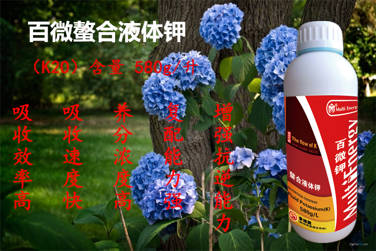 http://1248234200.qy.iwanqi.cn/system/ueditor//160920163705869586950000.png